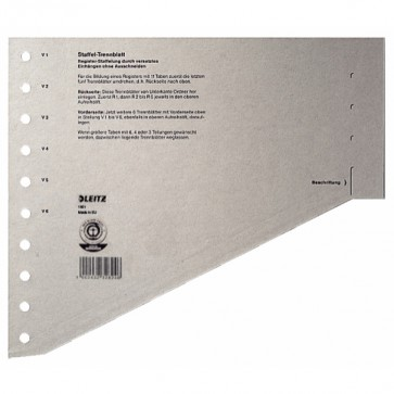 LEITZ Trennblätter A4 1651 A4 gestaffelt grau 24x20,5cm