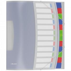 ESSELTE Ordnungsmappe VIVIDA PP A4 12 Fächer farbig