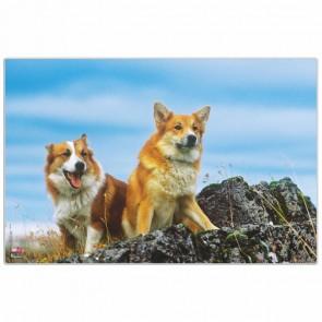 VELOFLEX Schreibunterlage Hunde 40 x 60 cm Kunststoff